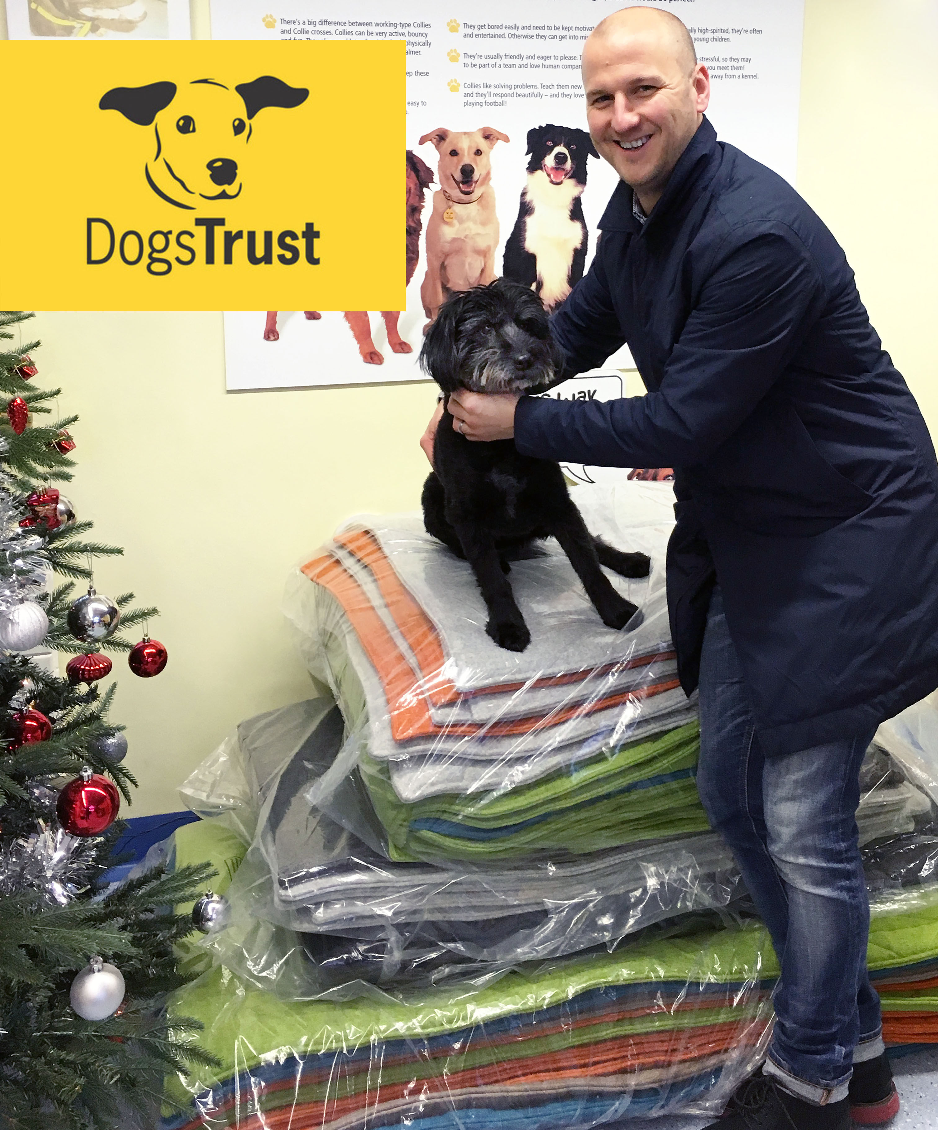 dogs trust and naughtone 02